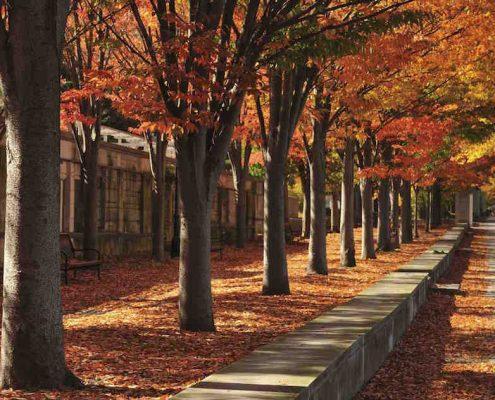 Sidewalk of Nassau Street in town of Princeton, New Jersey