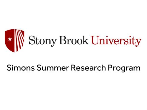 Simons Summer Research Program